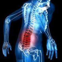 Colonna zona lombare - Dr. Mazzucchelli Luca Fisioterapia, Osteopatia e Terapia Manuale a Parma