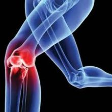 Ginocchio - Dr. Mazzucchelli Luca Fisioterapia, Osteopatia e Terapia Manuale a Parma
