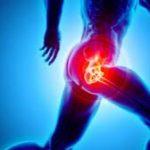 Fisioteraapia Anca - Dr. Mazzucchelli Luca Fisioterapia, Osteopatia e Terapia Manuale a Parma
